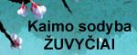 banner_zuvyciai