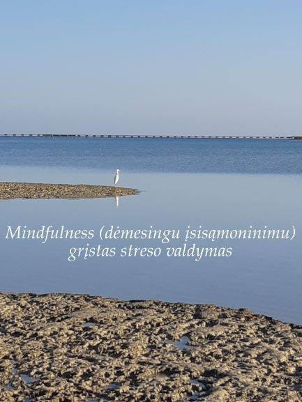 Mindfulness (dėmesingumu) grįstas streso valdymas (seminaras/praktikos) 1